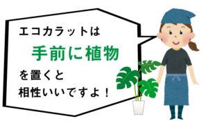 エコカラットは手前に植物を置くと相性がいいですよ!